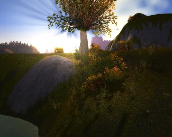 Ce n'est pas exactement une zone grandiose, comme Orneval, mais c'est une zone au charme discret et apaisant. - World of Warcraft