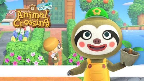 Animal Crossing New Horizons : Guide de la Journée de la Terre, Racine et récompenses