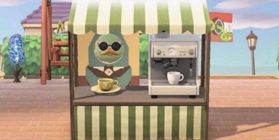 Robusto peut vivre au travers d'un panneau photo… - Animal Crossing New Horizons