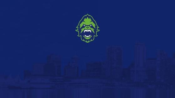 Overwatch League équipe Vancouver Titans : composition, roster, nom, logo