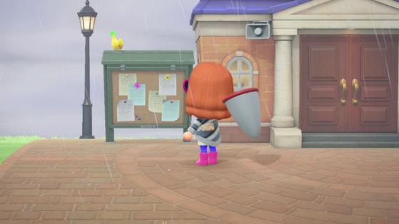 Animal Crossing New Horizons : peut-on attraper la chouette et l'oiseau jaune ?