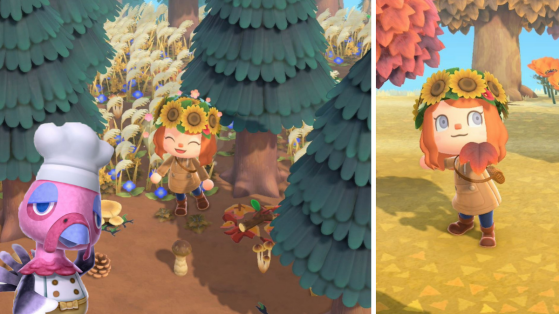 4 choses à faire en novembre sur Animal Crossing New Horizons