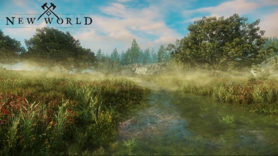 Des montures vont-elles être ajoutées sur New World ?