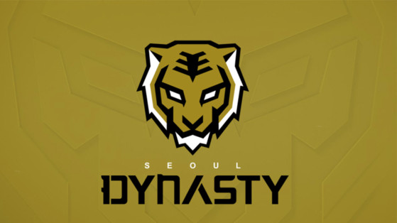Overwatch League équipe de Seoul Dynasty : composition, roster, nom, logo