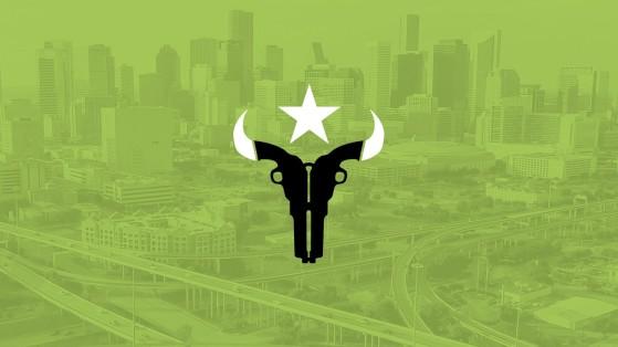 Overwatch League équipe de Houston Outlaws : composition, roster, nom, logo
