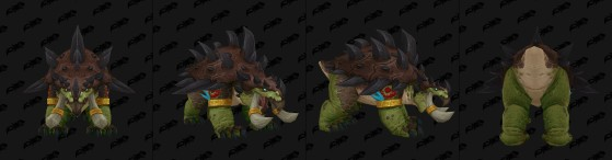 Forme d'ours - World of Warcraft