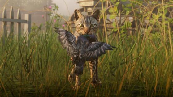 Red Dead Redemption 2 : Toujours plus d'images de la faune !