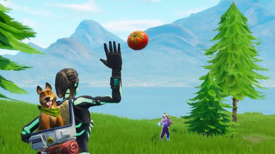 Fortnite : toucher un joueur avec une tomate