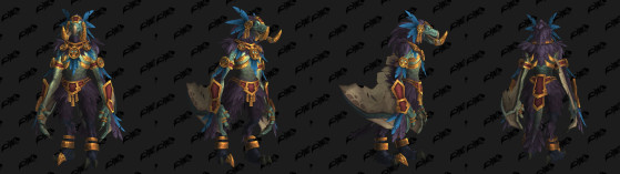 Incarnation : Appelé d'Élune des Trolls Zandalari - World of Warcraft