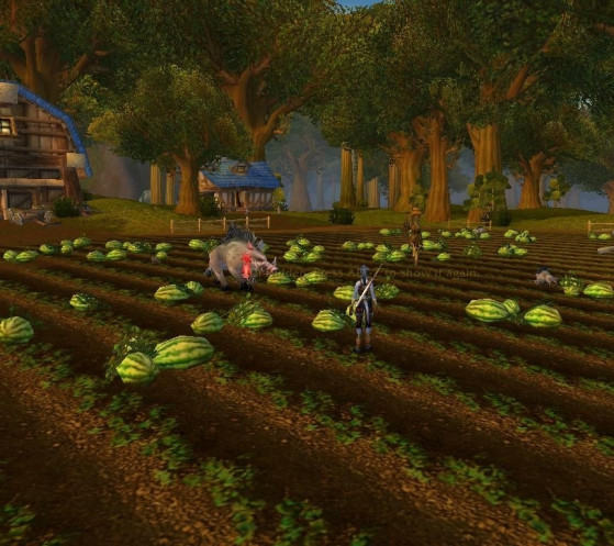 Ah chouette, je dois tuer une truie dans un champs... Dis-donc, là, tout de suite, je suis bien contente de payer mon abonnement tous les mois. - World of Warcraft