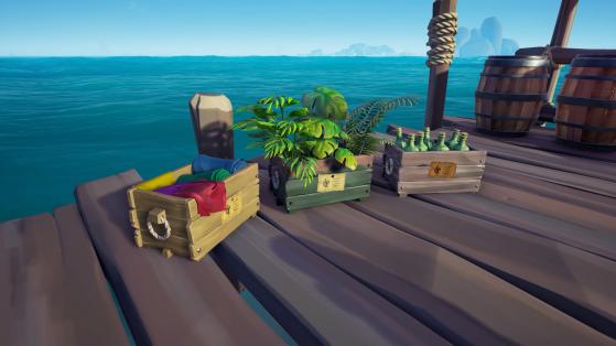 Livraison dans le meilleur état - Sea of thieves