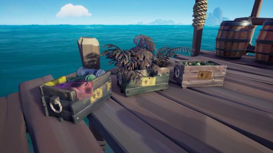 Livraison dans l'état le plus mauvais - Sea of thieves