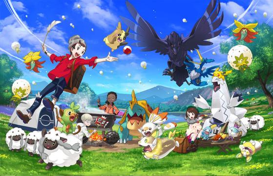 Pokemon Epee et Bouclier,  Wild Search, Terres Sauvages