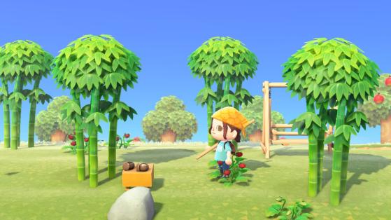 Animal Crossing New Horizons : comment obtenir du bambou ?