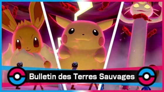 Pokemon Epee et Bouclier : Raid Dynamax, Pikachu, Evoli, Miaouss