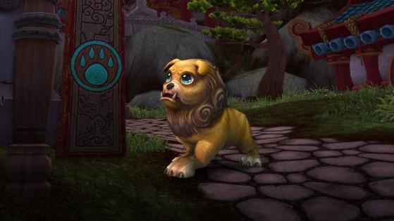 Le Bébé quilen porte-bonheur, mascotte de l'édition Collector de Mists of Pandaria - World of Warcraft
