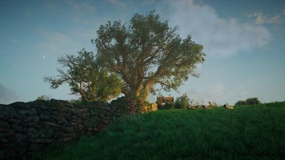 AC Valhalla : Soluce de la carte au trésor de Oxenefordscire
