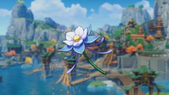 Genshin Impact : lys verni, où les trouver et comment les collecter ?