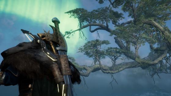 Soluce AC Valhalla, Asgard : Racine de montagne, comment en avoir ?