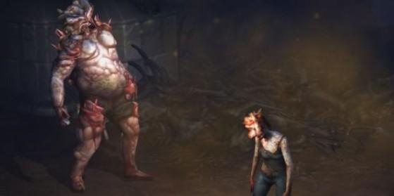 The Last of Us dans Diablo sur PS4