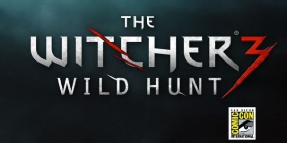 Comic Con, The Witcher, Gameplay