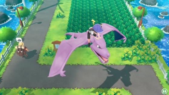 Ptéra - Pokemon