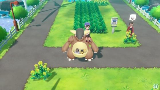 Kangourex - Pokemon GO