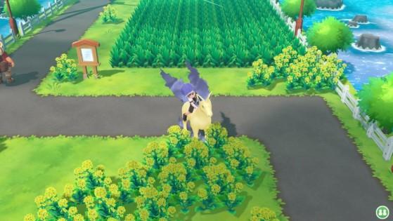 Galopa - Pokemon GO