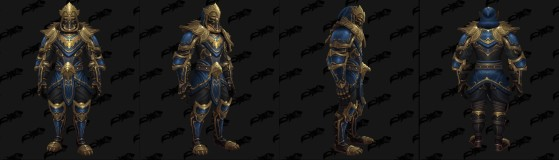 Set élite Cuir - World of Warcraft