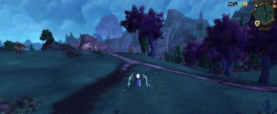 Visuel normal - World of Warcraft