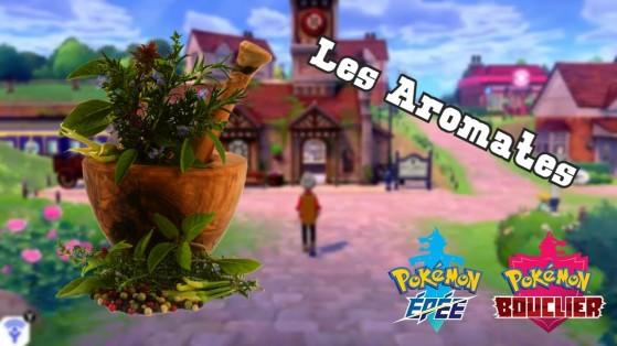 Guide Pokemon Épée et Bouclier : Utiliser les aromates