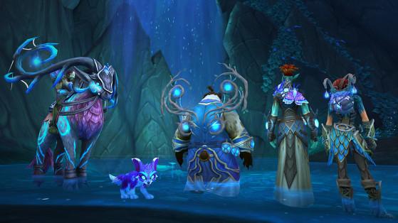 Apporter votre aide à la congrégation des Faë nocturnes vous permettra d'obtenir divers objets ornementaux et notamment des accessoires de dos éthérés. - World of Warcraft