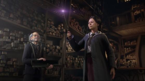 Boutique Ollivander - Harry Potter Hogwarts Legacy