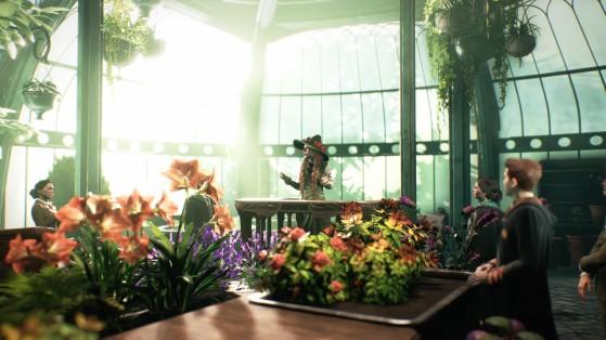 Cours de botanique - Harry Potter Hogwarts Legacy