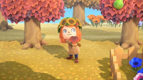 Feuilles d'érable et plans de craft dans Animal Crossing New Horizons