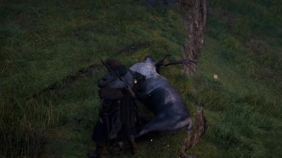 Guide AC Valhalla : Où trouver des bois de renne ?