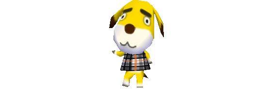 Champagne - Animal Crossing New Horizons