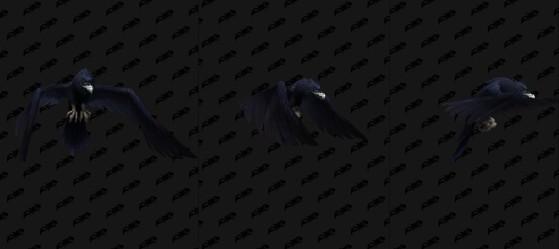 Chiropteffroi sombretraqueur - World of Warcraft