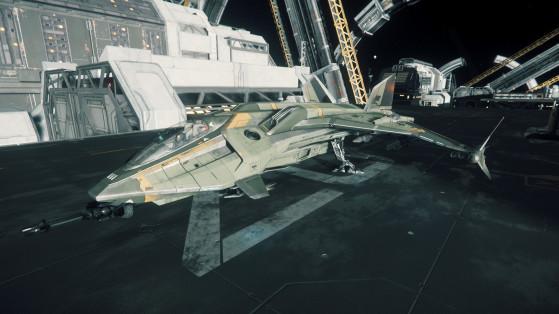 Prêt au décollage - Star Citizen